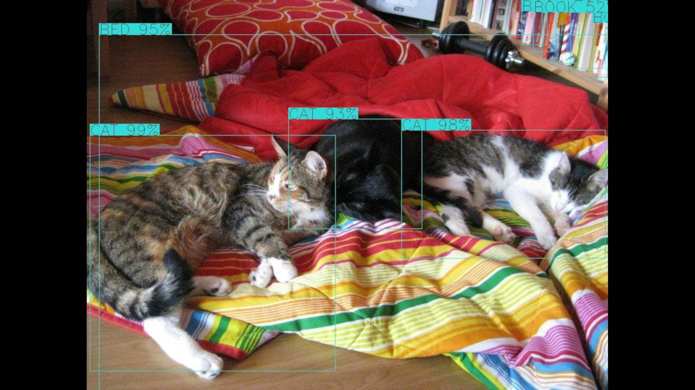 dev-eth0 de - Object Detection in Images and Videos using